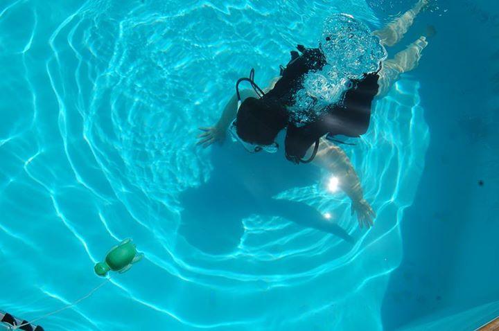 Mais qui, de la tortue ou du truc dans l'eau, flotte le mieux ?